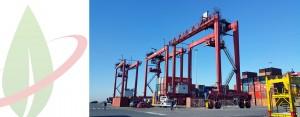 Ecomotive Solutions al porto di Livorno realizza la prima gru RTG Dual Fuel LNG