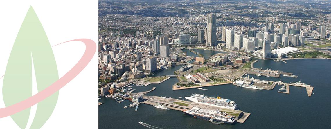 Il Giappone ha pianificato l'installazione della prima stazione di bunkeraggio GNL a Yokohama
