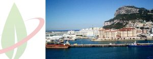 Shell costruirà un piccola unità di rigassificazione per rifornire di gas Gibilterra