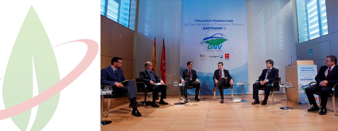 La comunità di Madrid rafforza il proprio impegno verso l'adozione NGV