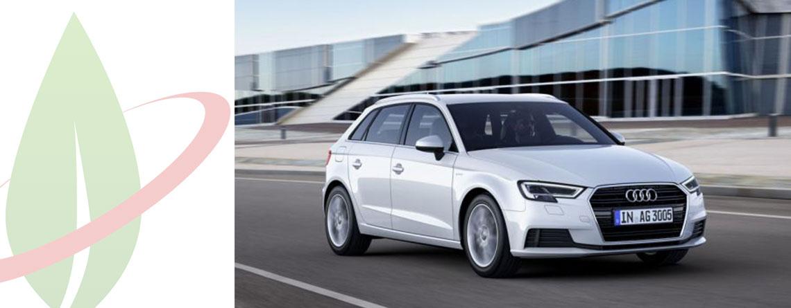Audi A3 Sportback g-tron ottiene il miglior punteggio nel test di endurance