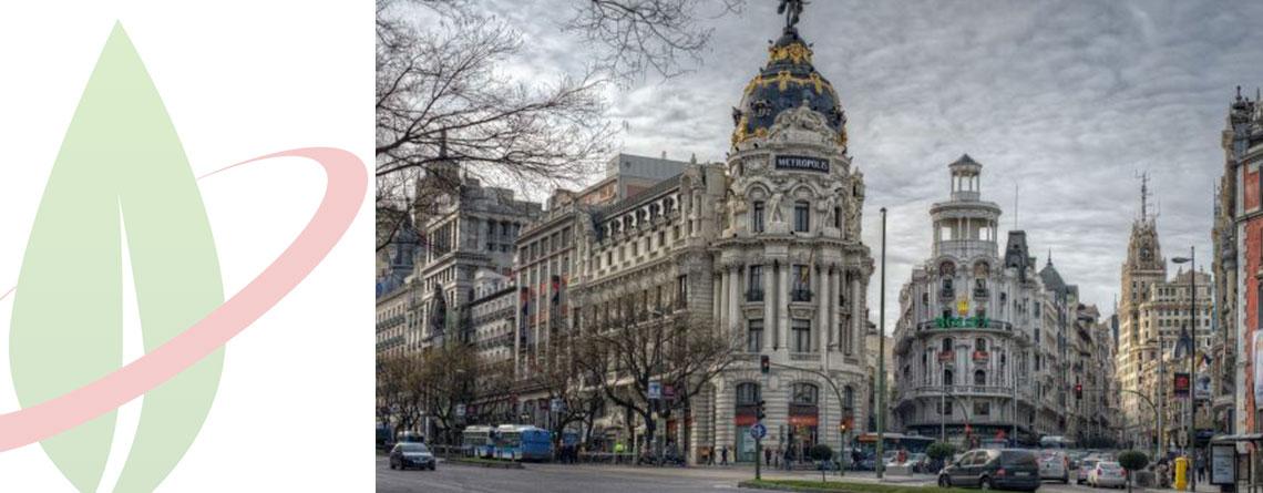 """Il governo spagnolo amplia il piano di promozione dell'uso dei veicoli """"green"""""""
