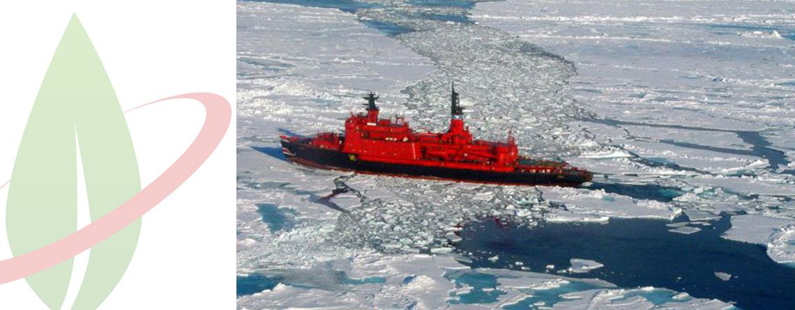Il Ministro russo sottolinea l'importanza di ridurre l'uso di carburante fossile nell'Artico