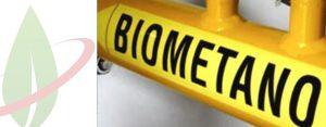 Biometano per le auto: i vantaggi per l'Italia