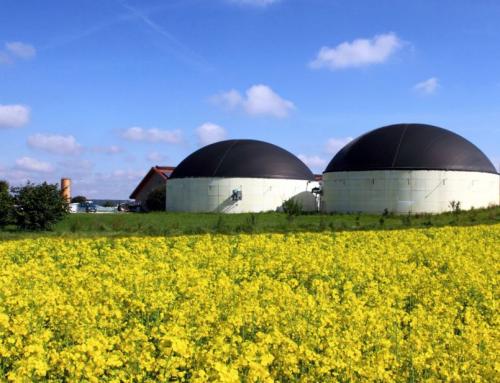 Snam costruirà il suo primo impianto a biogas in Sicilia